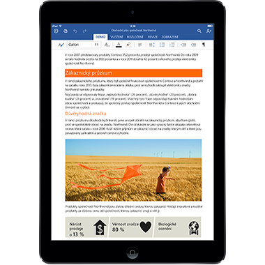 Office pro iPad