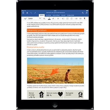 Office pro iPad