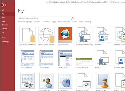 Et skærmbillede af en skabelon til en databaseapp