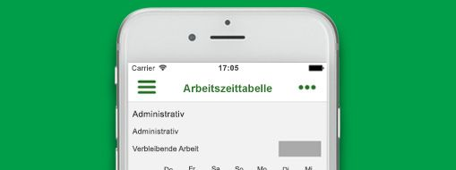 Eine in Project Professional geöffnete Projektdatei, Office 365 Project Time Reporter