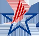 VPATs, Informationen zu den Barrierefreiheitsanforderungen gemäß Section 508