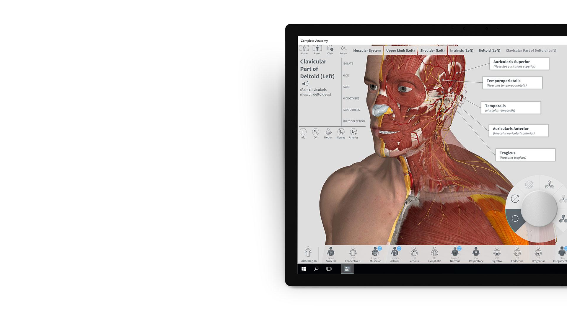 Complete Anatomy-App auf einem Surface-Gerät.