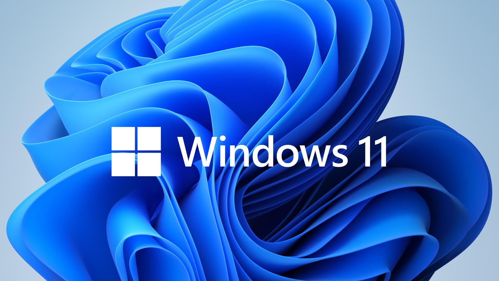 Windows 11 logo and decorative background