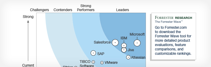 a page from the Forrester study