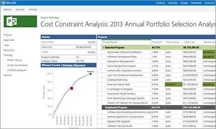 Flexible project portfolio management