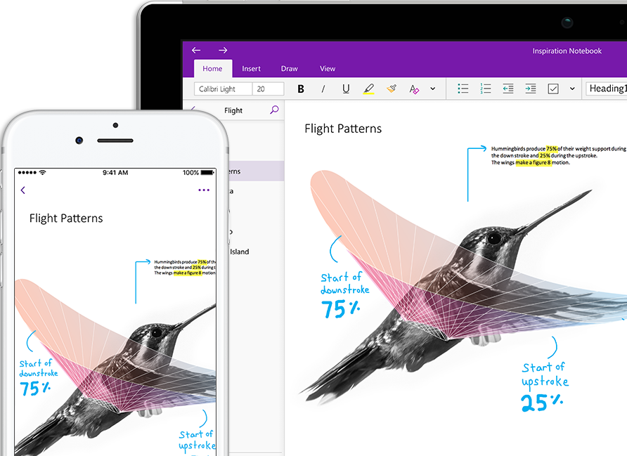 A OneNote notebook called Inspiration showing a hummingbird on a smart phone and a tablet computer