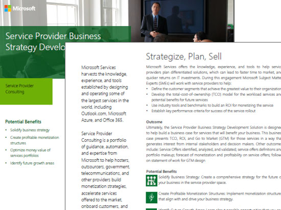 Service Provider Business  Strategy Development Datasheet