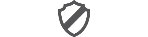 Shield icon representing security