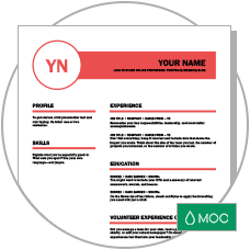 polished resume and cover letter - Microsoft Resume Templates