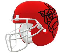 Eric Muscoreil's custom NFL helmet design