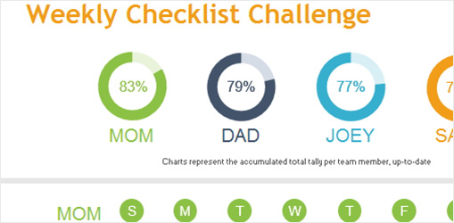Daily Checklist Challenge Excel spreadsheet showing categories and family member names