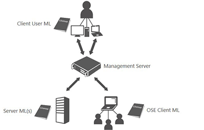 client access licenses cal management licenses microsoft