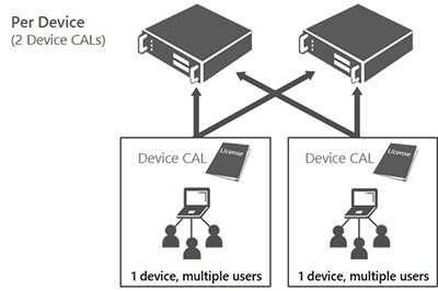 Client Access License based on device