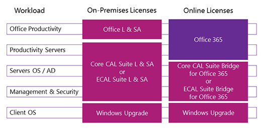 CAL Suite workloads, on-premises licenses, and online licenses