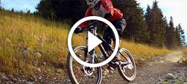 Trek Bicycles: Improving Efficiencies