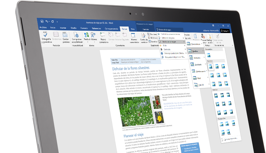 Una tableta Surface en la que se muestra la característica Información en un documento de Word.