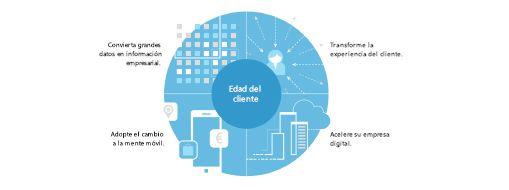 Gráfico de TEI study que muestra una estrategia de cuatro partes para crear la transformación de toda la empresa