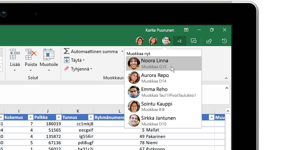Excel-työkirja, jonka oikealla puolella on Tiedot-ikkuna