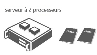 Software licensed by processor