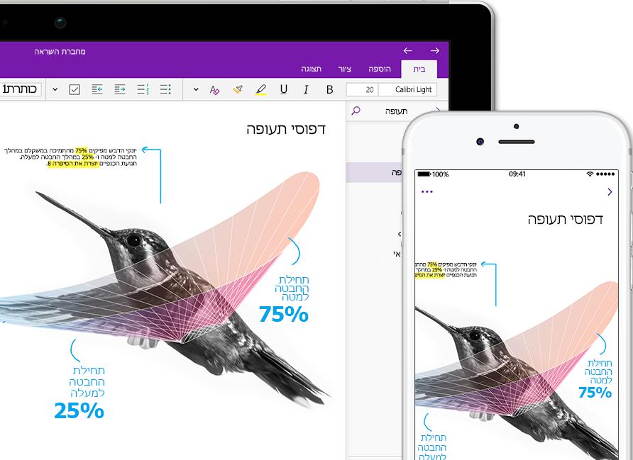 מחברת של OneNote בשם 'השראה' המציגה יונק דבש בטלפון חכם ובמחשב Tablet