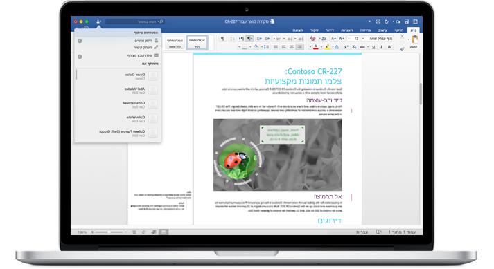 מחשב נישא שמציג מסמך Word עם הערות ותפריט 'אפשרויות שיתוף'.