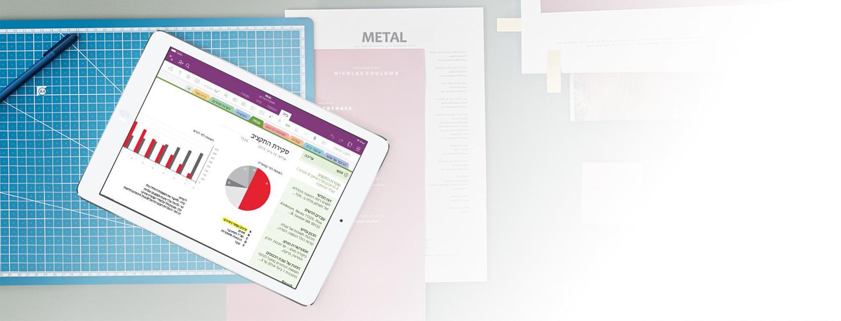iPad המציג מחברת OneNote עם תרשימים וגרף של סקירת תקציב