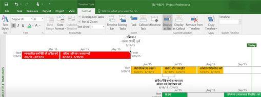 Project Professional में खुली हुई प्रोजेक्ट फ़ाइल का स्क्रीनशॉट