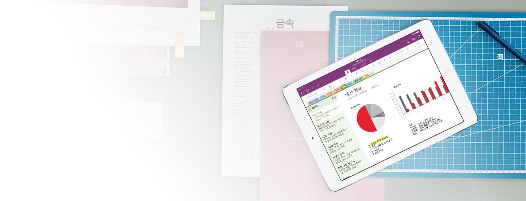 예산 개요 차트 및 그래프가 포함된 OneNote 전자 필기장이 표시된 iPad