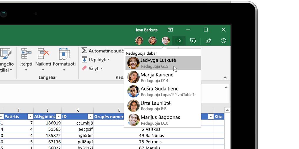 """""""Excel"""" darbaknygė su įžvalgų langu dešinėje"""