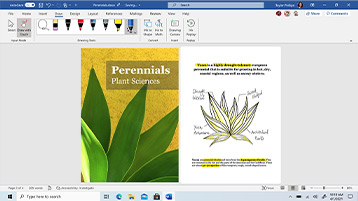 Colaboração no Word exibida na tela