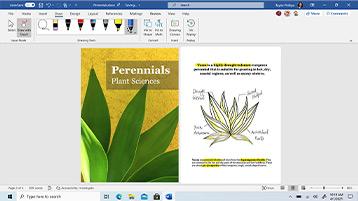 Colaboração do Word apresentada no ecrã