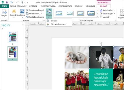 O captură de ecran a unei aplicații Publisher cu instrumente pentru imagine afișate în panglică.