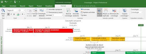 Captură de ecran a unui fișier de proiect deschis în Project Professional
