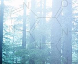 Химические символы, наложенные на изображение леса