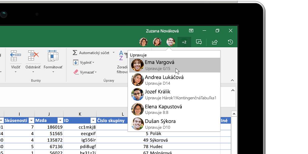 Excelový zošit aokno prehľadov na pravej strane