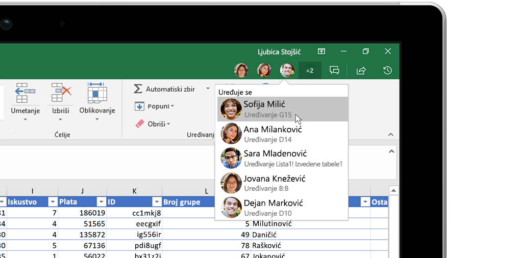 "Excel radna sveska sa prozorom ""Uvidi"" sa desne strane"
