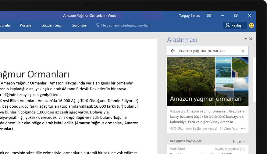 Bir Word belgesini ve Amazon yağmur ormanı hakkında bir makaleyi gösteren Araştırmacı özelliğinin yakından görünüşünü içeren dizüstü bilgisayar