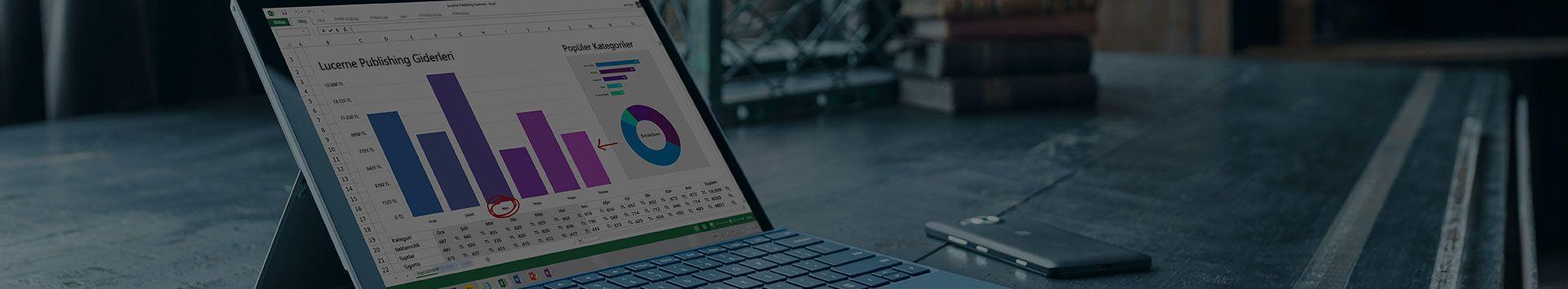 Microsoft Excel'de bir gider raporunun görüntülendiği Microsoft Surface tablet