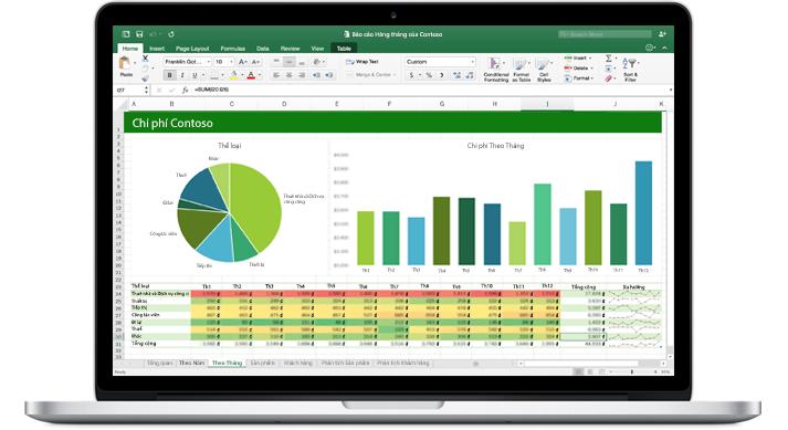 Máy tính xách tay hiển thị một trang tính Excel với hai sơ đồ minh họa các mẫu dữ liệu.