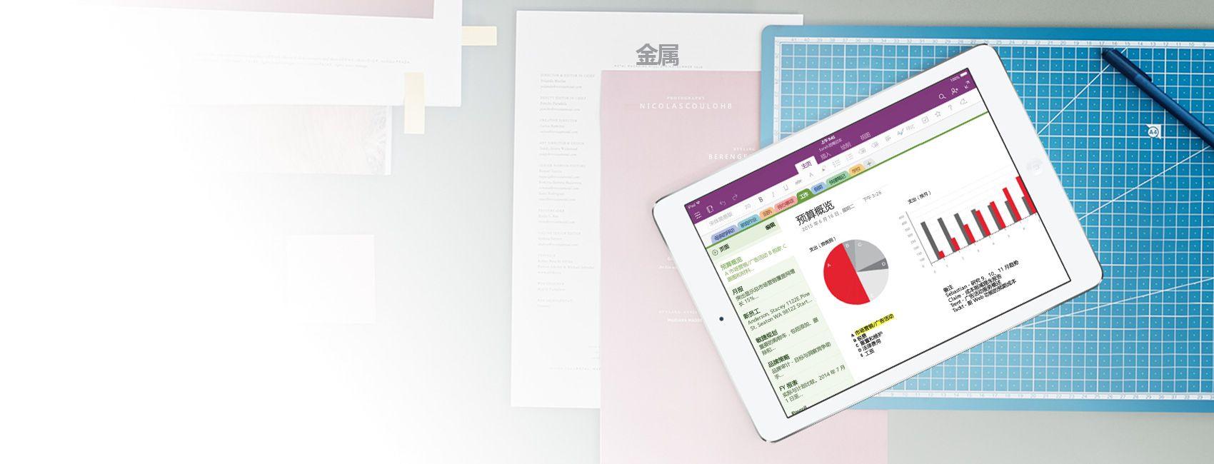 显示 OneNote 笔记本以及预算概况图表和图形的 iPad